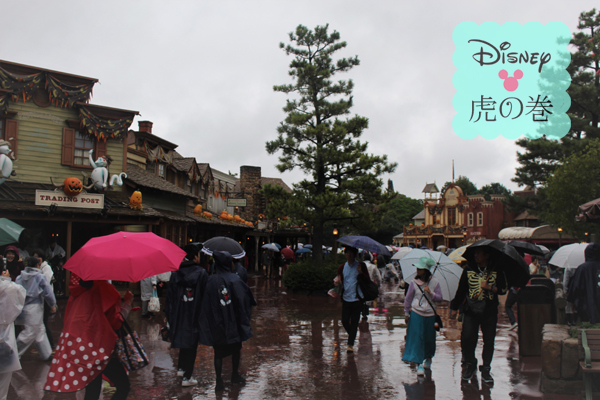 ディズニー 雨対策
